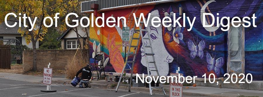 Weekly Digest November 10 2020