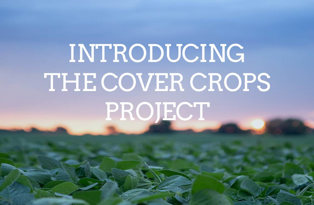 Introducing the Cover Crops Project