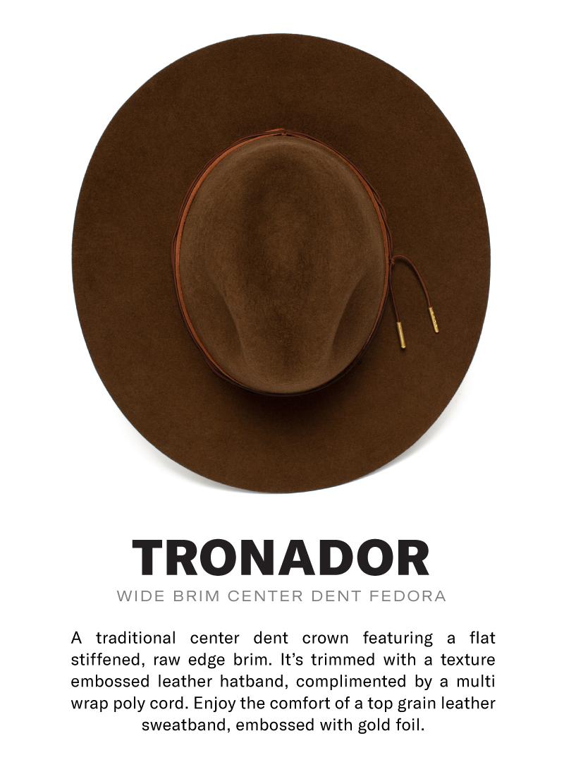 Tronador