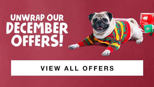 Unwrap Our December Offers