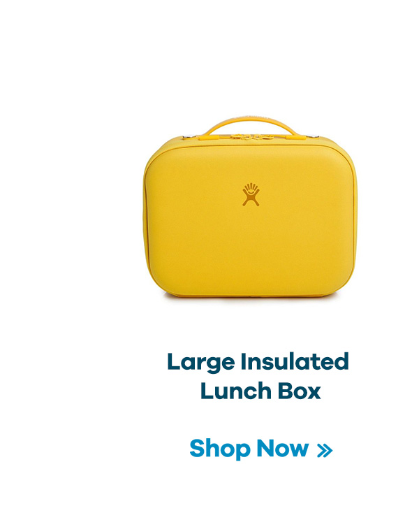 Large Insulated Lunch Box | Shop Now >>