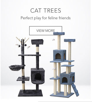 Perfect play for feline friends