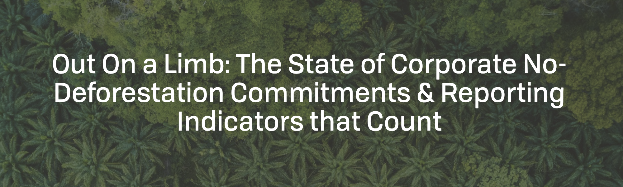 Out on a Limb: The State of Corporate No-Deforestation Commitments