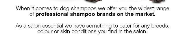 Shop Dog Shampoo