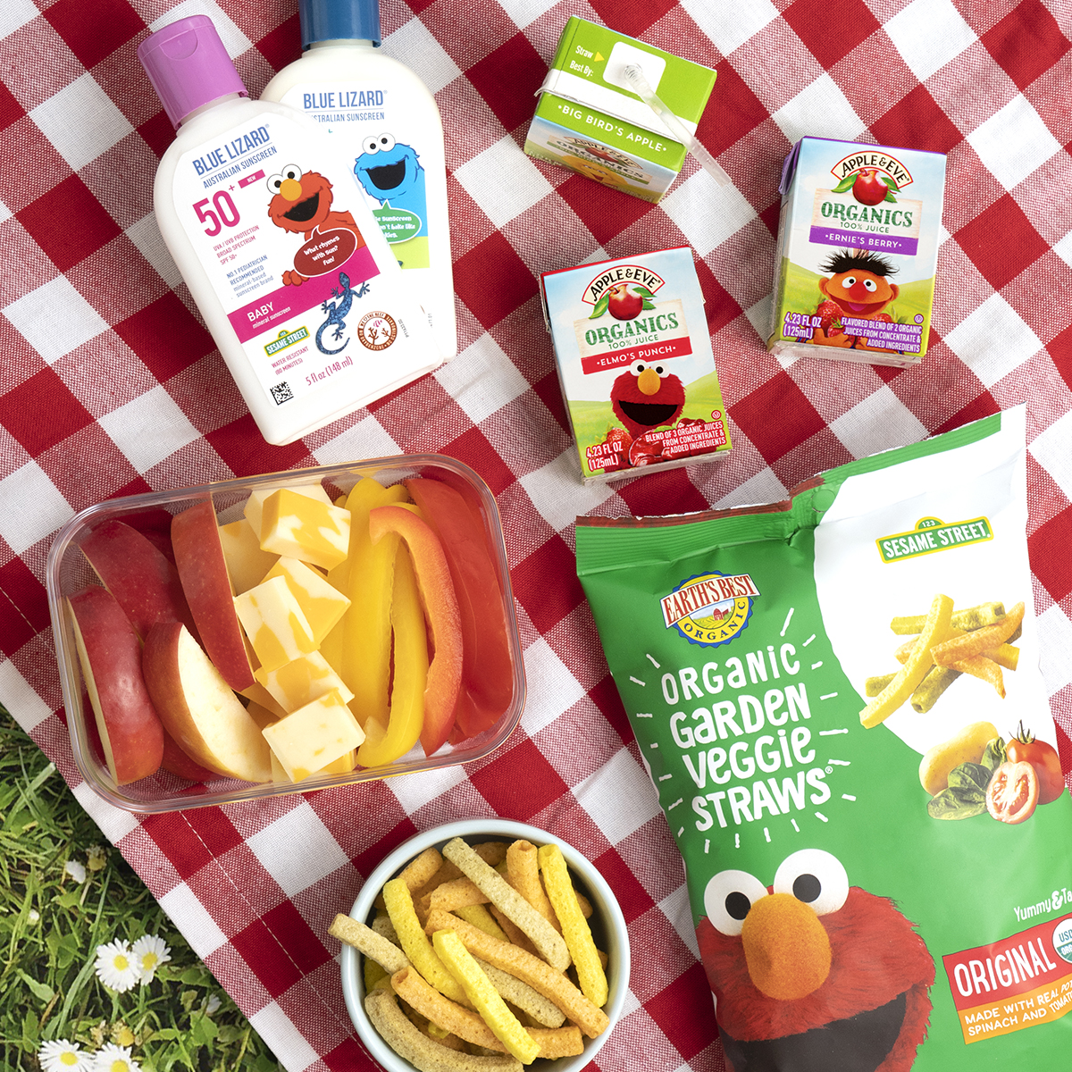Picnic scene with Blue Lizard Sunscreen, Apple & Eve juice boxes and Earth''s Best Organic Garden Veggie Straws