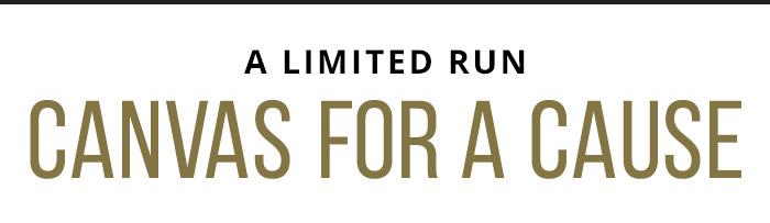 A Limite Run: Canvas for a Cause