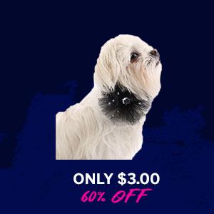 Aria Starburst Dog Scrunchy - Black