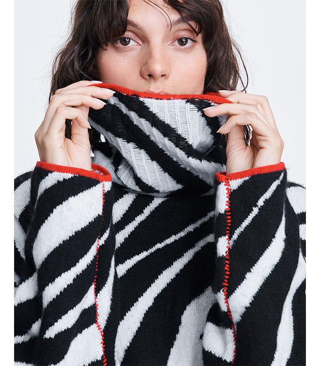 Trending Now: Zebra Print