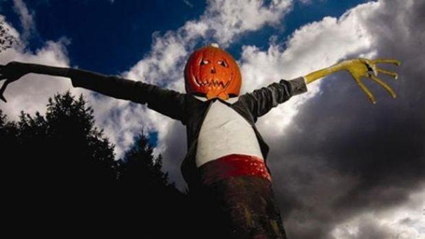 A Jack-o''-Lantern scarecrow