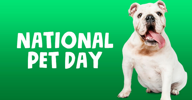 Let''s Celebrate National Pet Day!