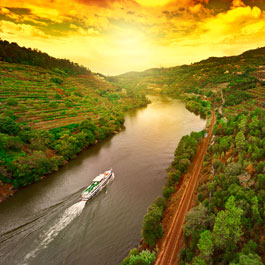 View of the Douro Valley