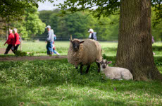 Explore the great outdoors in Chesterfield