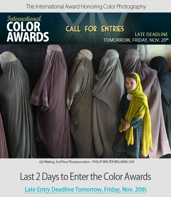 Last 2 Days to Enter the Color Awards - Late Entry Deadline Tomorrow, Friday, November 20th