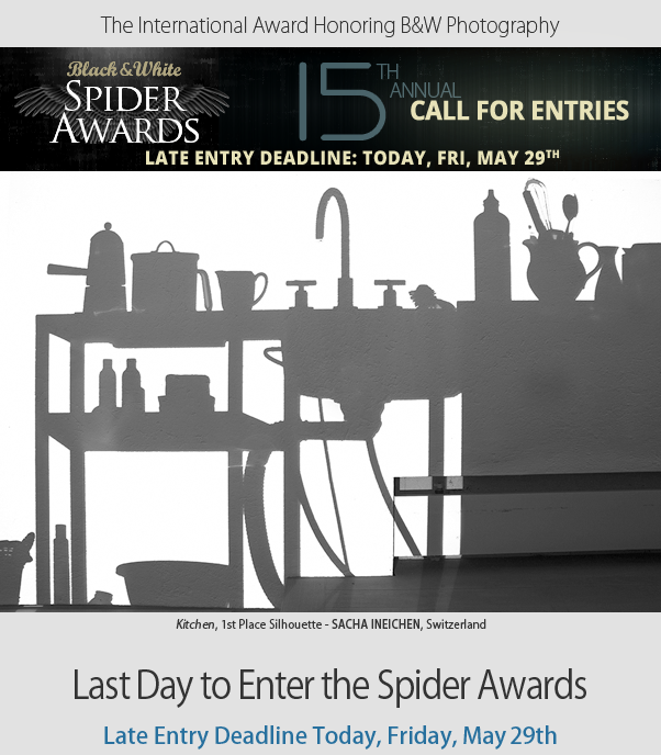 Last Day to Enter Spider Awards