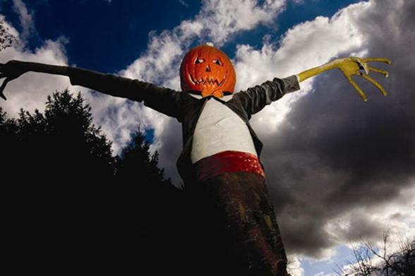 A scarecrow with a Jack O''Lantern head