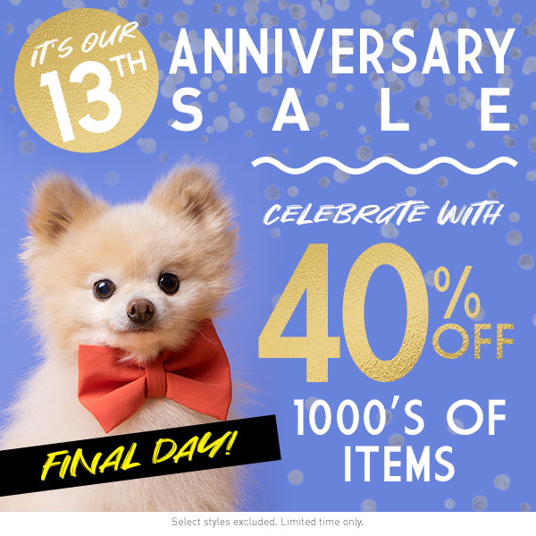 13th Anniversary Sale
