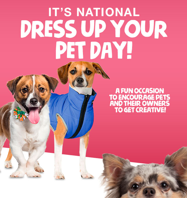 It's National Dress Up Your Pet Day