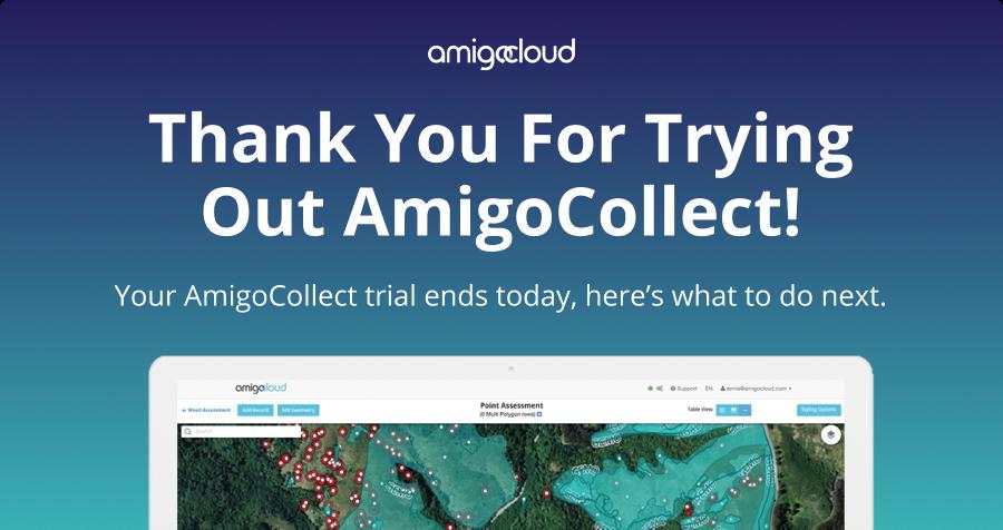 AmigoBackground