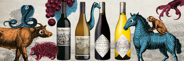 Exclusive Fine Wines from South Africa