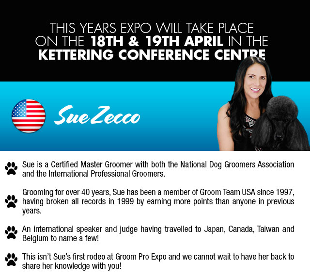 Sue Zecco