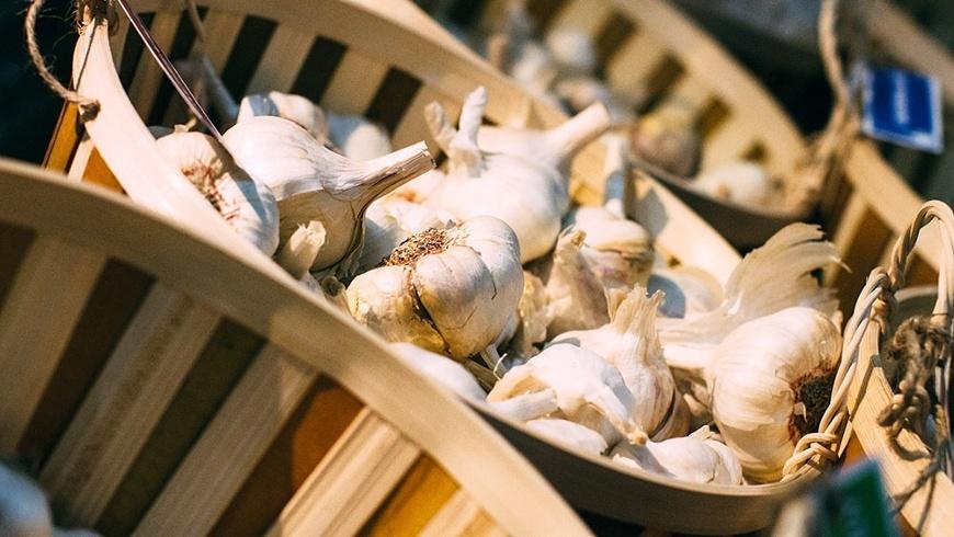 Garlic Pic 1-4