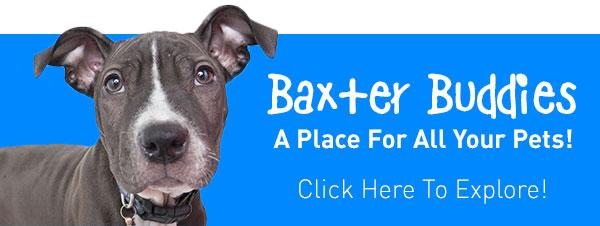Baxter Buddies!