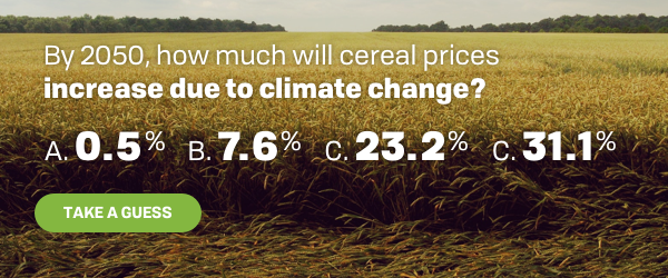 By 2050, how much will cereal prices increase due to climate change?