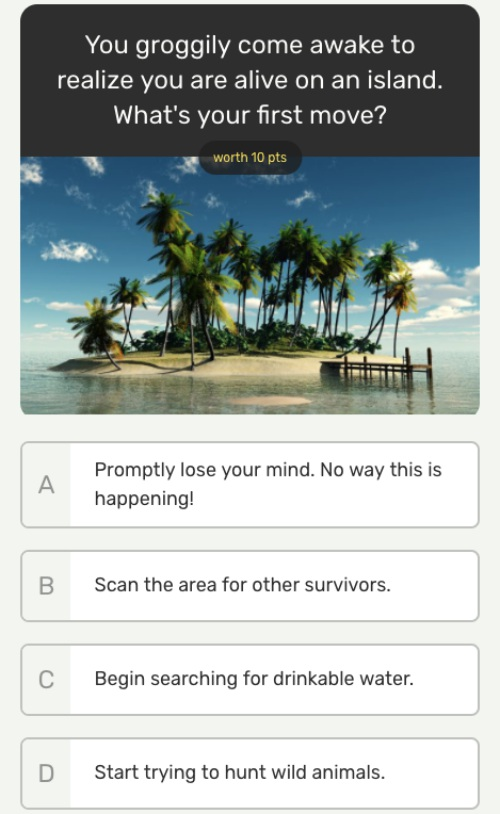 You groggily come awake to realize you are alive on an island. What's your first move?