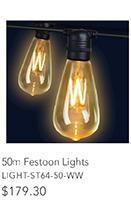 50m Festoon Lights