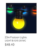 20m Festoon Lights