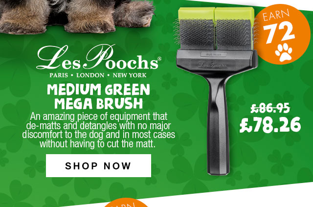 10% Off Les Poochs Medium Green Mega Brush