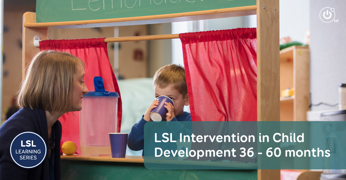 8-LSL-learning-series-FB