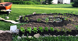Lasagna Gardening - one easy step towards self sufficiency-at-home