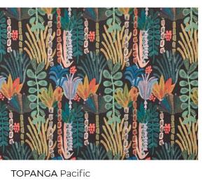 Topanga in Pacific