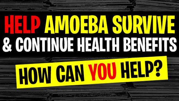 Amoeba Needs You Help To Survive & Continues Health Benefits