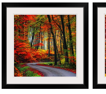 Colorful Way by Philippe Sainte-Laudy