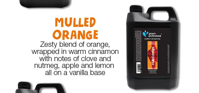 Shop Mulled Orange Shampoo