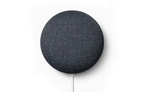 Shop Google Charcoal 2nd Gen Nest Mini