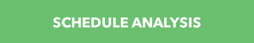SCHEDULE ANALYSIS GREEN BUTTON