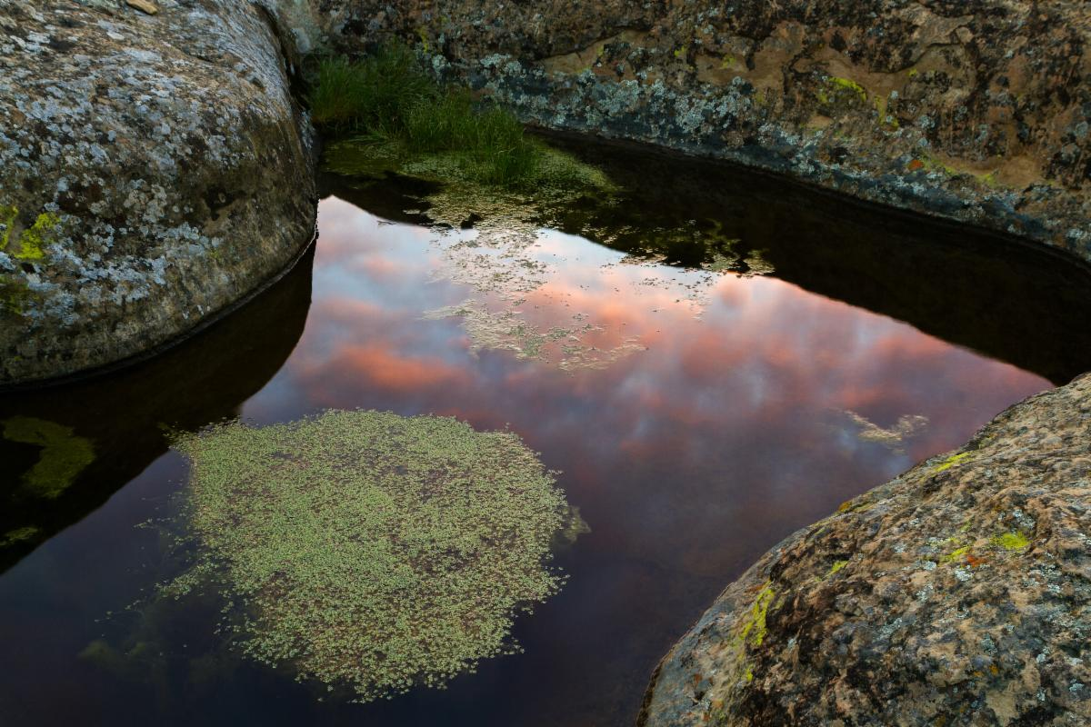 pond reflecting sunset and surrounded by lichen covered rocks Photo credit Justin Jarratt