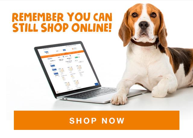 Shop online now!