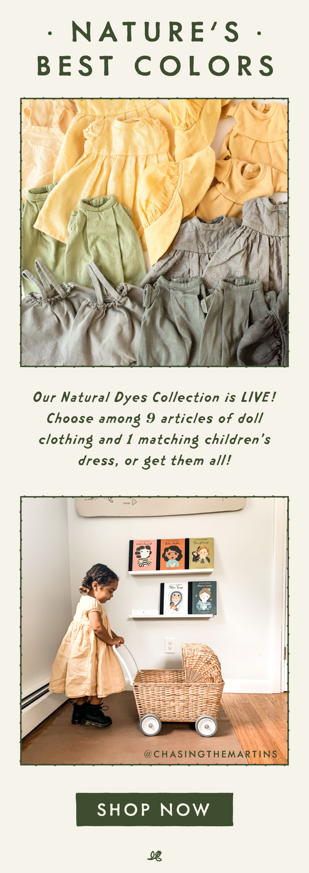 shop natural dyes now