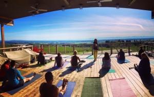 People practicing yoga on Brooks' deck.