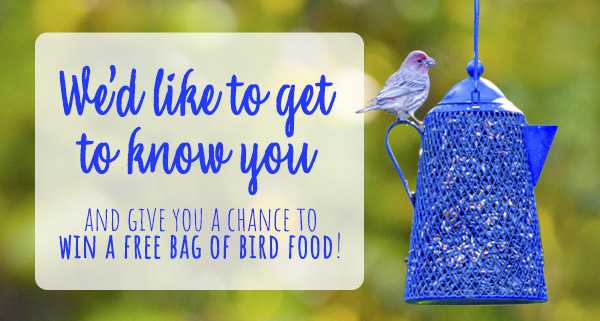 We'd like to get to know you and give you a chance to will a free bag of bird food!