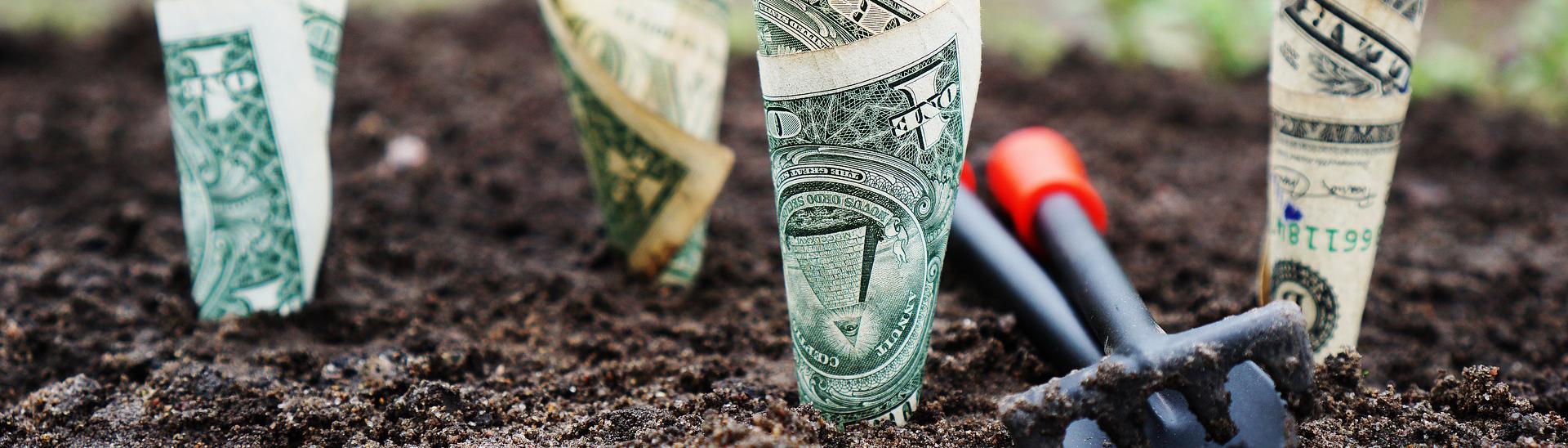 moneyventurecapital