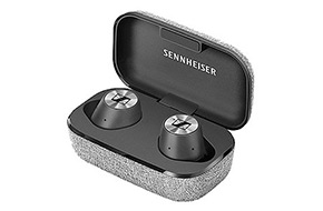 Shop Sennheiser MOMENTUM In-Ear Black True Wireless Earphones
