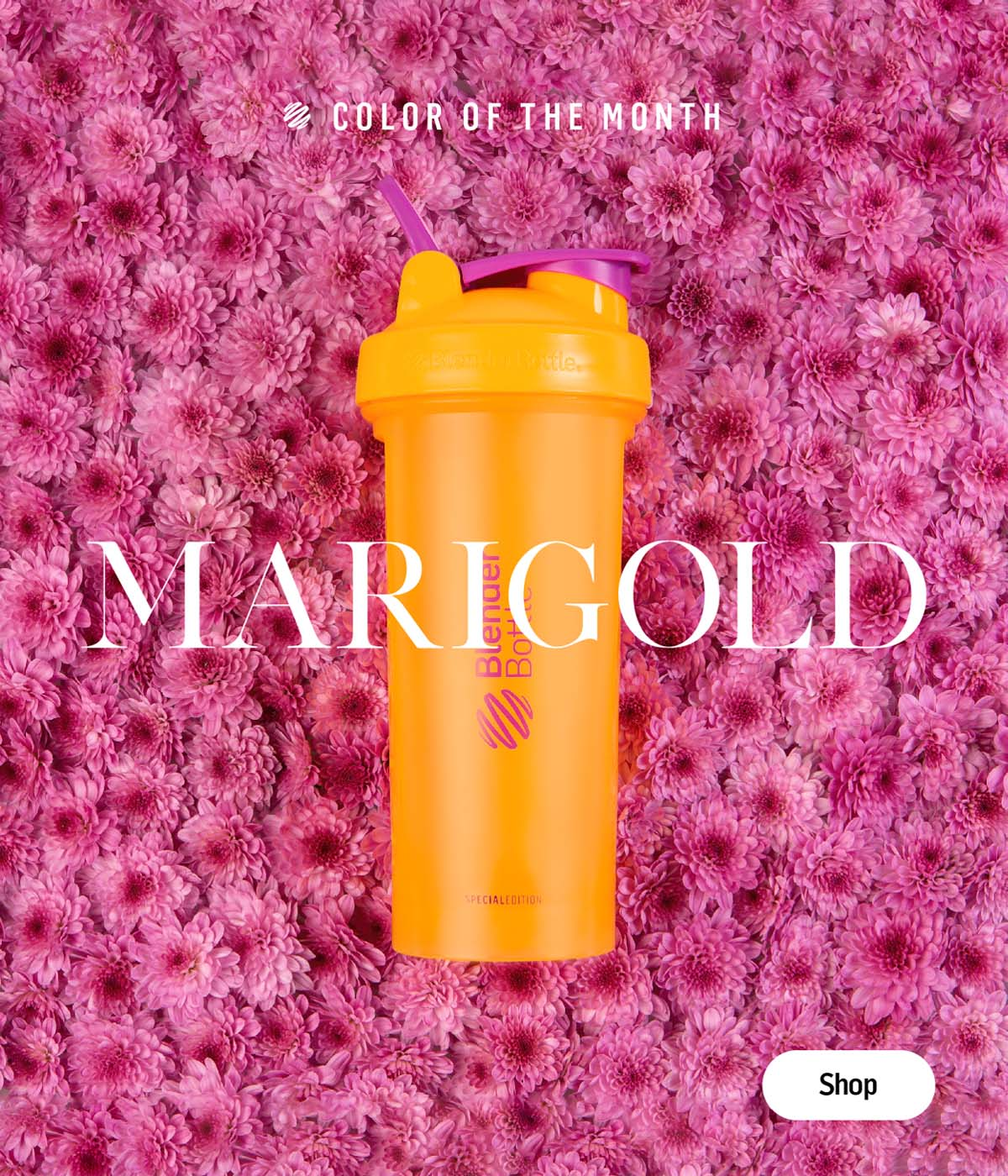 May Color of the Month - Marigold