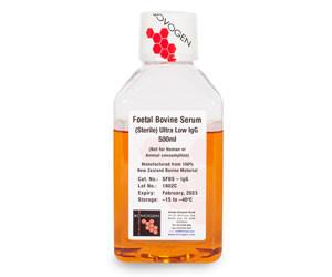 Image: Bovogen Biologicals Ultra Low IgG FBS
