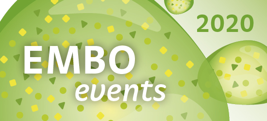 EMBO events