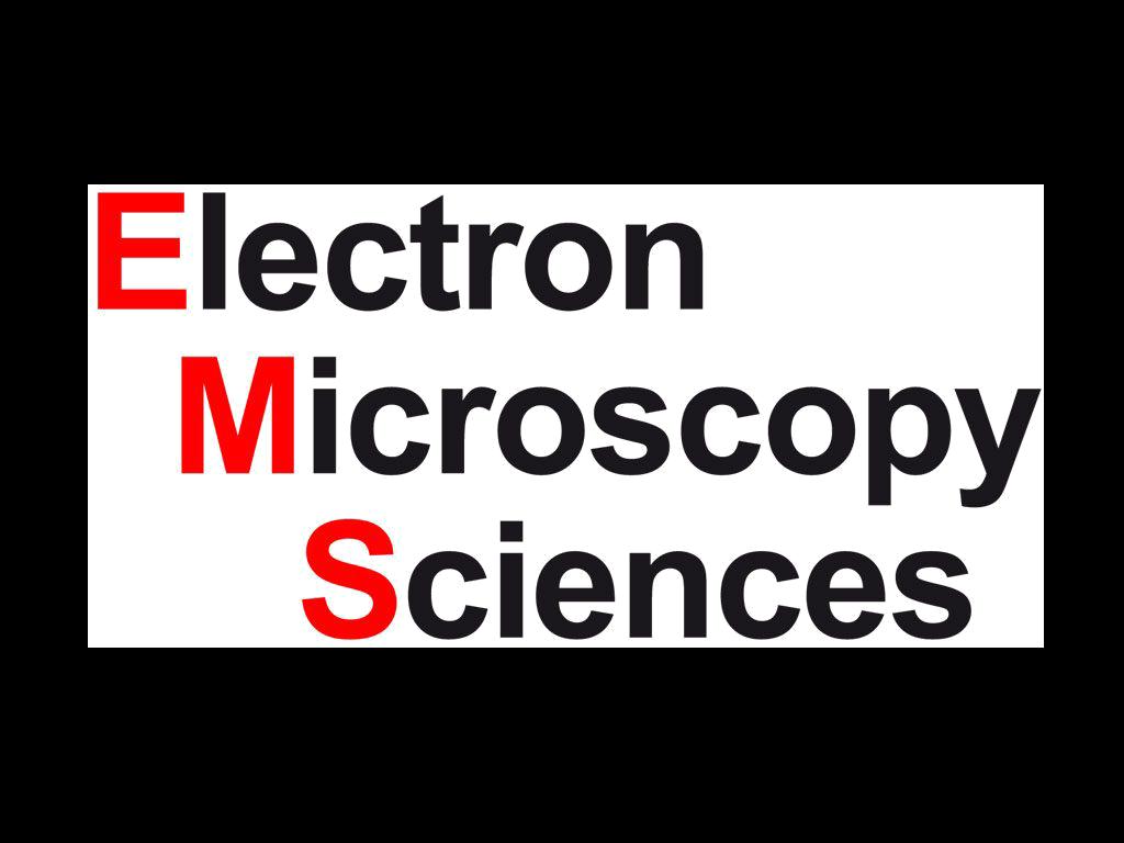 EMS_logo_trans